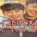 韓国ドラマ「サイコだけど大丈夫」日本放送はいつから?Netflix